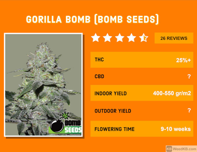 gorilla bomb