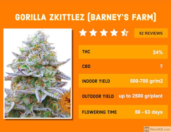 gorilla zkittles