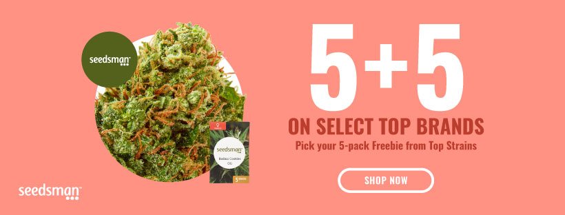 GET YOUR FREE CANNABIS SEEDS NOW