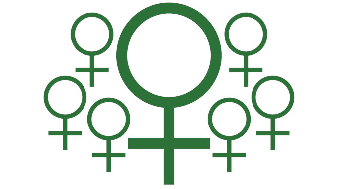 can feminised seeds be cloned