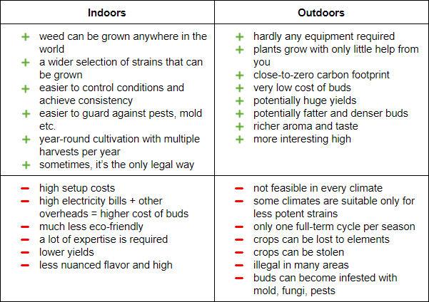 indoor vs outdoor weed