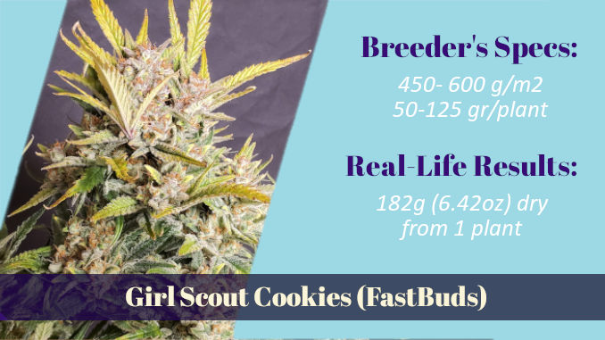 Girl Scout Cookies FastBuds