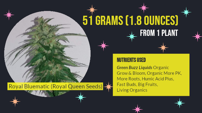 organic nutrients for royal bluematic rqs