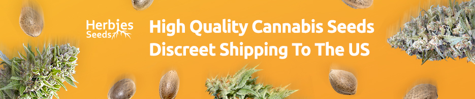 High Quality Cannabis Seeds. Discreet Shipping to the US