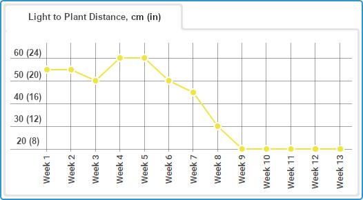 Gorilla Glue Auto diary, light distance chart