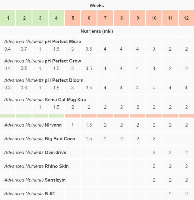 Gorilla Glue Autoflower journal, nutrient schedule